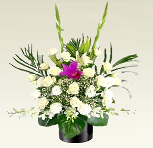 供花【J1】